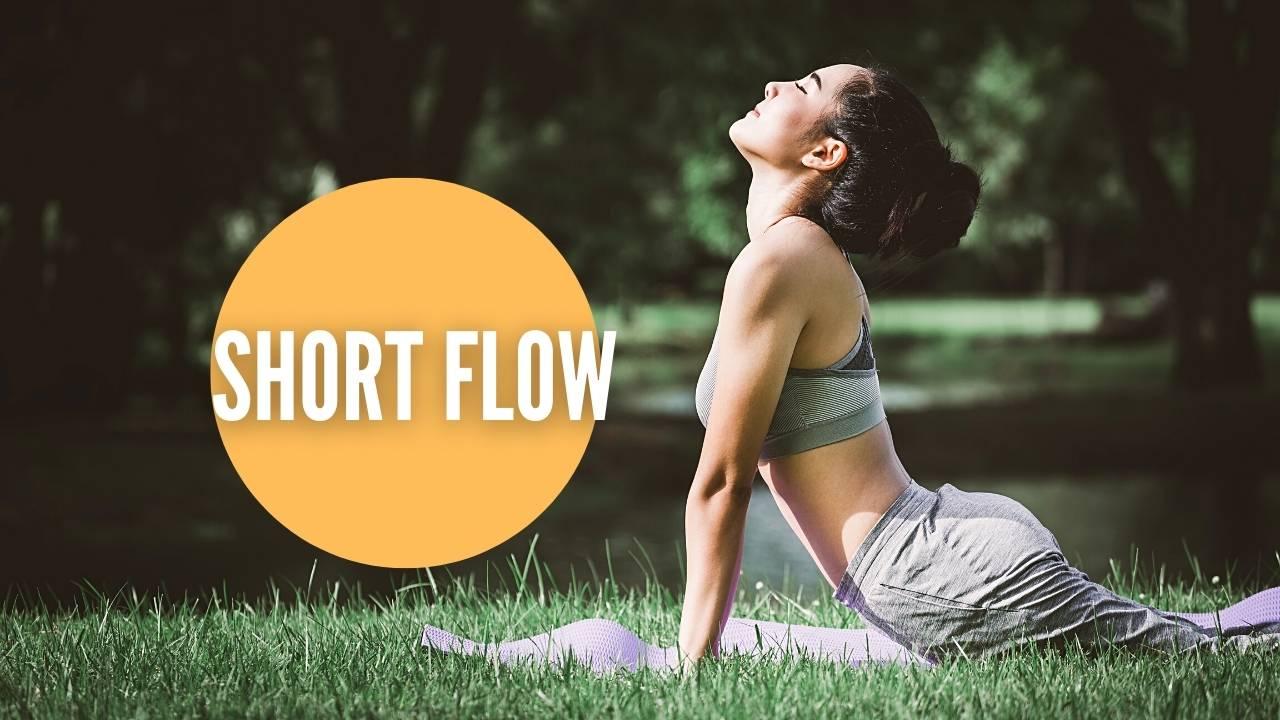 shortflow
